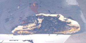 Požár v domě na Lesní čtvrti ve Zlíně: Díky duchapřítomnosti syna majitele nebyl nikdo zraněn