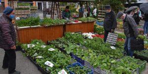 Trhy ve Valašském Meziříčí zahájí oblíbený Květinový jarmark