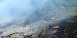 V katastrálním území obce Liptál hořelo