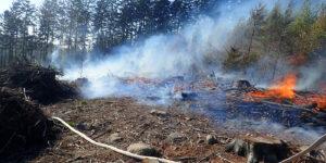 Při likvidaci požáru rubaniska v Ratiboři byl vyhlášen druhý stupeň poplachu